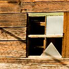 Old Wood and Window by Virginia Maguire