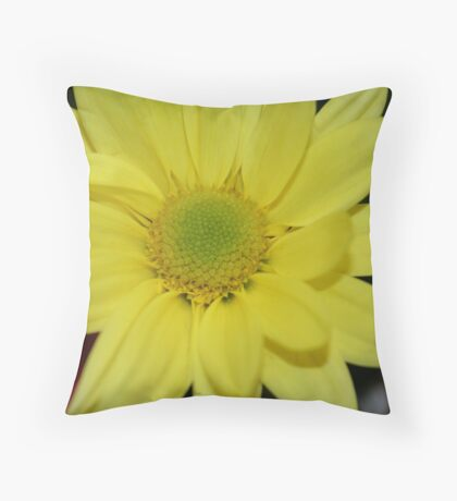 Beauty In The Middle Throw Pillow