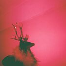 Red Deer by KarmaSparks
