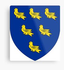 Coat of Arms of Sussex, England Metal Print