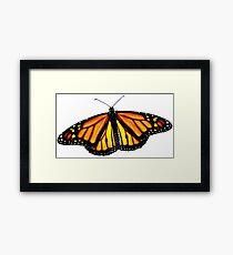 Monarch Butterfly Framed Print