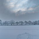 ACROSS THE FOOTBALL FIELD by relayer51