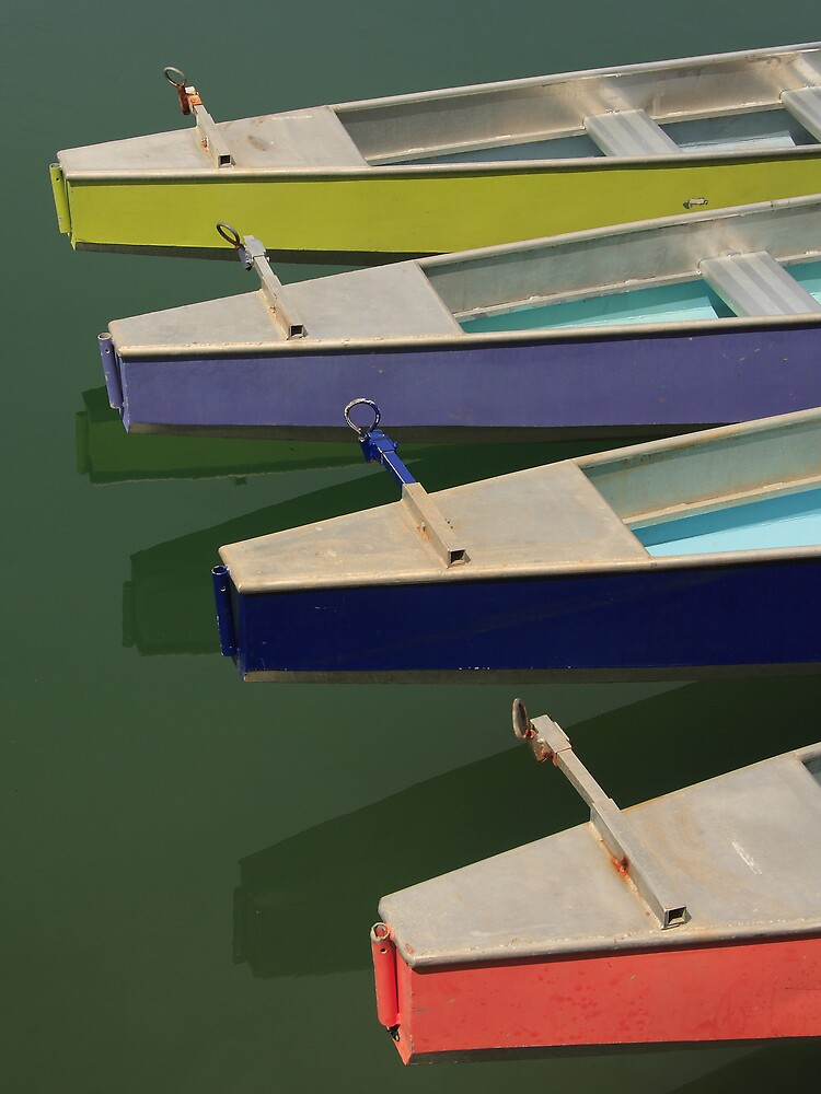 Dragon boats by Lew Brown
