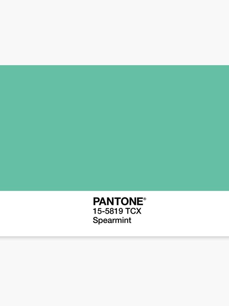 91d08a97e3a8 Pantone Spearmint Canvas Print. Pantone Spearmint by isobelflorence