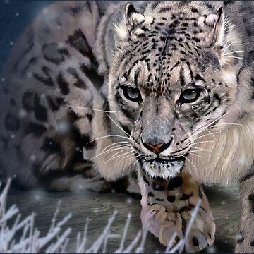 Wildlife Art - Snow Leopard by yajyolid