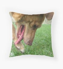 Where did I bury that bone? Throw Pillow