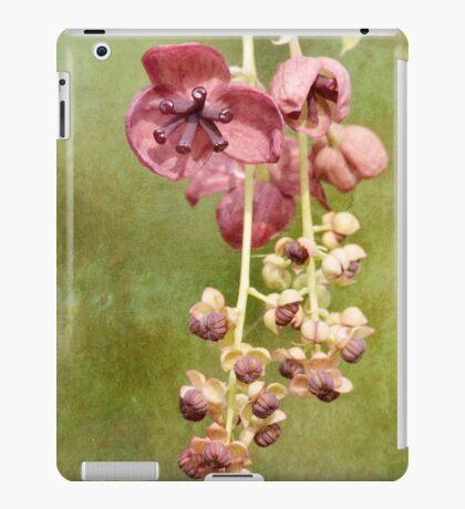 Chocolate Vine iPad Case/Skin