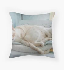 Did you bring the nip? Throw Pillow