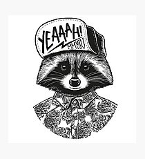 Cool racoon Photographic Print