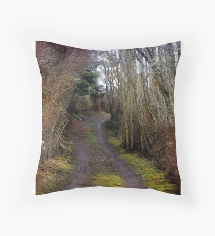the truth within us Throw Pillow
