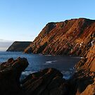 Sunny Morning at Outer Cove by OldBirch