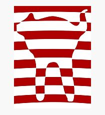 red striped cat 3 Photographic Print