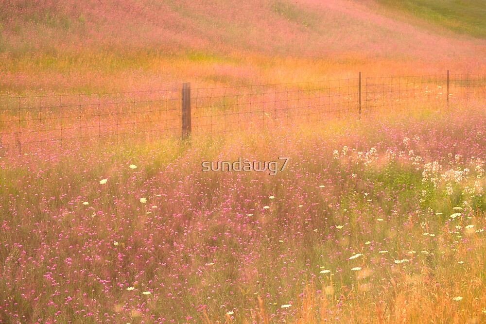 Pastoral Reverie by sundawg7