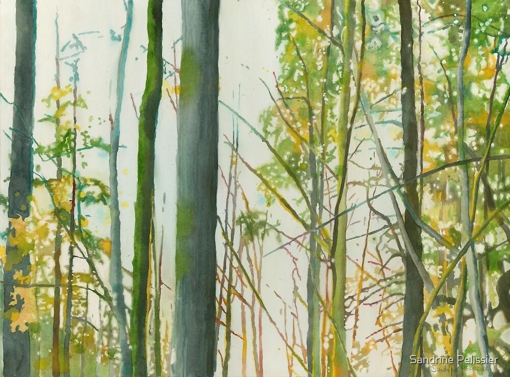 Arborescences by Sandrine Pelissier