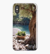 Beautiful River Jordan iPhone Case