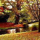 Mona Vale, Christchurch NZ. by John Brotheridge