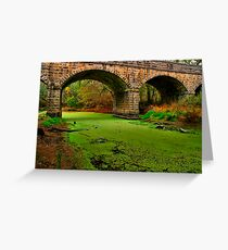 """Green River"" Greeting Card"