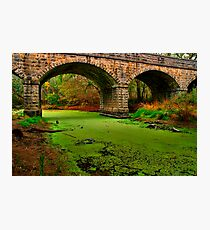 """""""Green River"""" Photographic Print"""