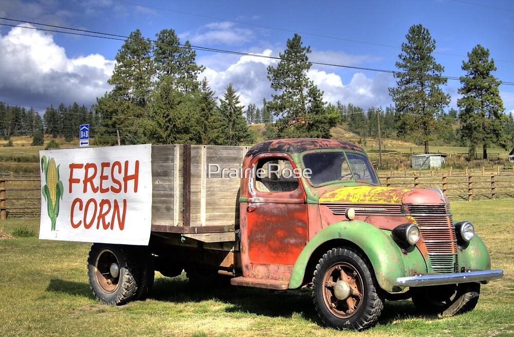Fresh Corn by PrairieRose