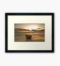 The Sacred Moss Rock Framed Print