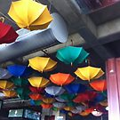 upside down brolly by Lesley Ritchie