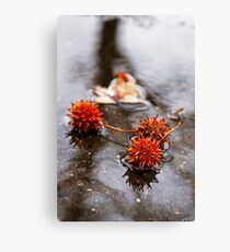 Spike Puddle Canvas Print