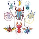 Stitches: Bugs by VrijFormaat