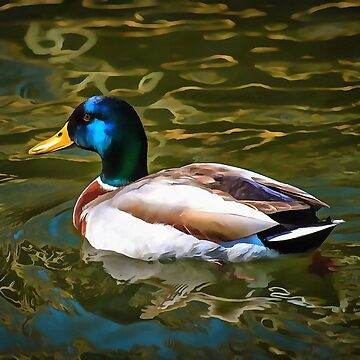 The Son Of A Duck Is A Floater  by taiche