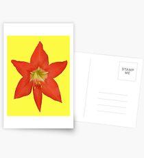 Amarillas on Yellow Postcards