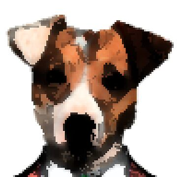 Jack Russell by ianjf6