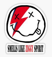 ROCK ART #NIR x ZIG x spirit Sticker