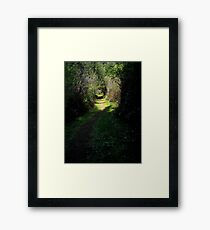 Take the Magical Path Framed Print