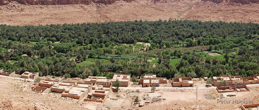 River valley, Morocco by Peter Hammer