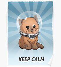 Póster Subnautica: Keep Calm Kitty