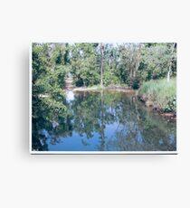 Creeks Canvas Print