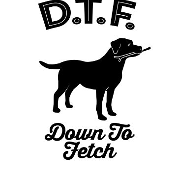 DTF Down to Fetch Funny Labrador Retriever Edition T-shirt by sphericalearth