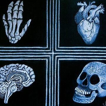 Heart & Brain by VickyGood