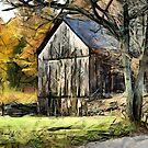 Roadside Barn by LjMaxx