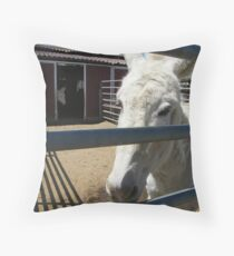 Jack and Jenny..... Throw Pillow
