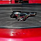 Grille 2007 Stang by John Schneider