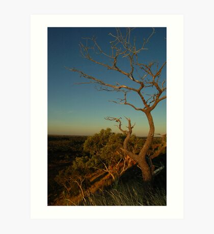 Outback at Sunset Art Print