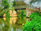 Dod`s Bridge, The Wey Navigation by Colin  Williams Photography