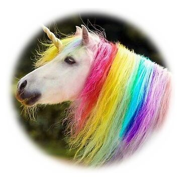 Unicorn with a Rainbow Mane by WigOutlet