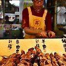 Taiwanese Market, 2008 by Tash  Menon
