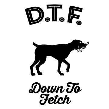 DTF Down to Fetch Funny German Shorthaired Pointer Edition T-shirt by sphericalearth
