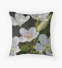 blossum on a pear tree  Throw Pillow