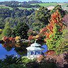 Emu Valley Rhodo Garden, near Burnie by gaylene
