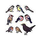 Gartenvögel von Großbritannien von Joumana Medlej