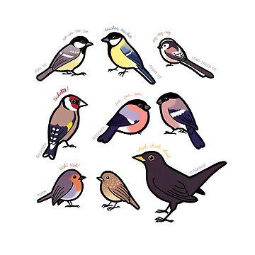 Garden Birds of Britain by Cedarseed