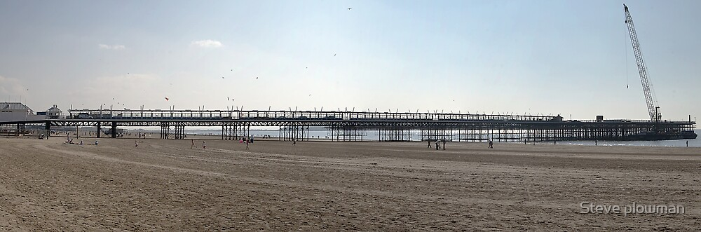 Panorama of the Pier by Steve plowman